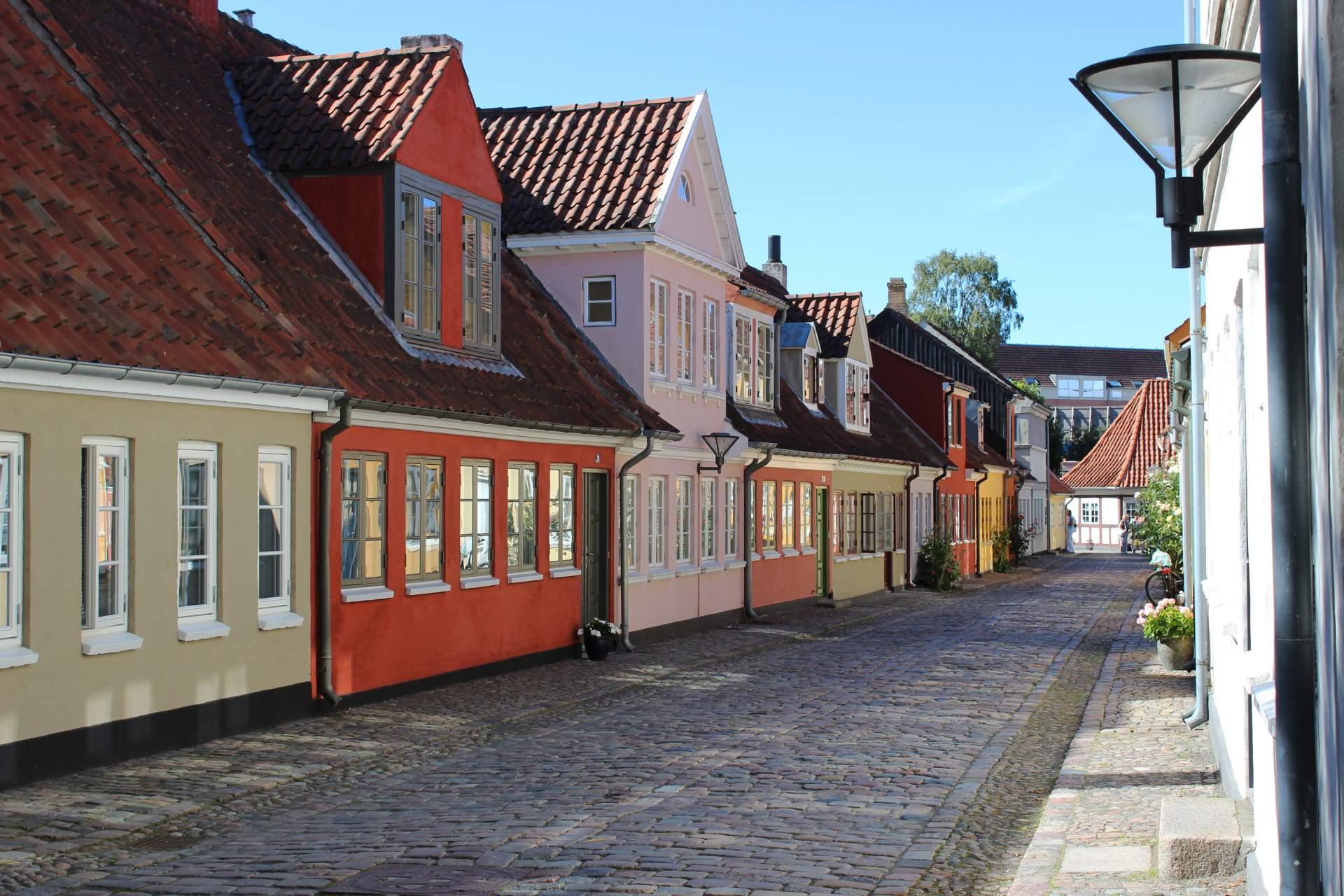 Busreis Denemarken Anders Odense